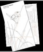 The Marsh Wren Guides