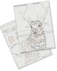 Smoky Mountain Elk Guides